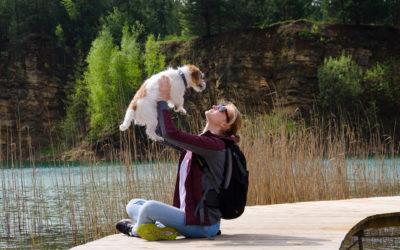 Pies – najdroższy sercu